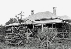 The original Wellcamp Downs Homestead in the early 1900's